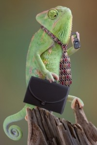 Chameleon Businessman